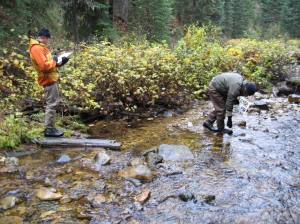 Conducting pebble counts in shotgun Creek Powell RD CNF 2007 Adam Switalski